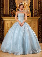 Baby Blue Organza 2013 Winter Quinceanera Party Dress