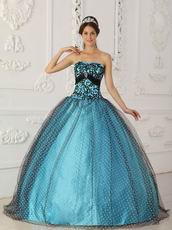 Pretty Dotted Tulle Fabric Prom Ball Gown With Black Applique