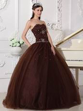 Chocolate Tulle Adult Ceremony Party Dress With Rhinestone