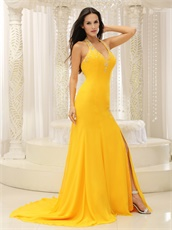 Sexy Open Back Celebrity Dreses For Beauty And The Beast Theme