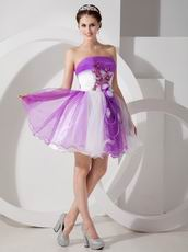 2013 New Trend Contast Color Short Sweet 16 Dresses