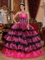 Zebra Boidce Multi-color Layers Skirt Ebay Quinceanera Dress