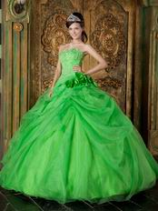 Side Handmade Flowers Decorate Spring Green Quinceanera Dress