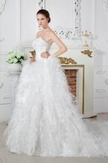 Luxurious Sweetheart Dropped Waist Cathedral Feather Wedding Dress