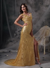 Golden Sequin V-neck Long Skirt With Split Night Club Dress Night Club