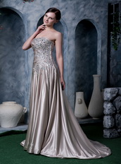 Dark Champagne Strapless Silk Like Satin Evening Dress Low Price Night Club