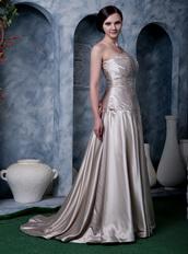 Dark Champagne Strapless Silk Like Satin Evening Dress Low Price Night Club