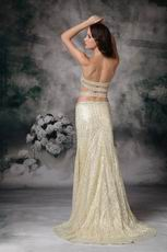 Sexy Exposed Golden Sequin Woman In Evening Dress