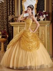 Pretty Golden Sequin Corset Back Adult Ceremony Girls Dress