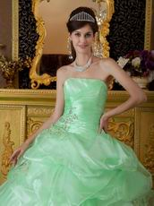 Lovely Style Quinceanera Theme Dress In Apple Green