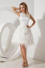 Scoop Feather Decorate Skirt Short Sweet 16 Dress With Button