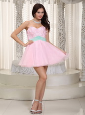 Baby Pink Lovely Prom Dress With Butterfly Appliques Design Knee Length Sexy