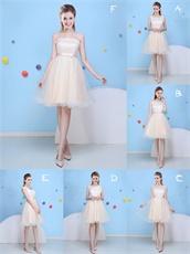 Short Skirt Elastic Mesh Tapes/Horsehair Elegant Champagne Series For Bridesmaid Dama