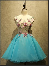 Aqua Scoop Mini Length Homecoming Dress With Wintersweet Appliques