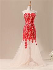 Elegant Mermaid Champagne Prom Dress With Red Chemical Lace