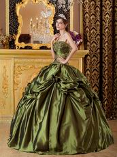 Olive Green Strapless 2014 Prom Quinceanera Dress For Sale