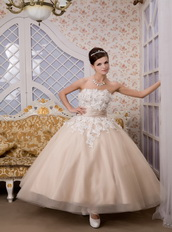 Strapless Ankle-length Tulle Appliques Champagne Quince Dresses Like Princess