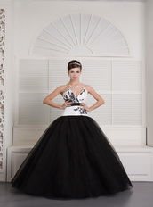 Black and White Ball Gown V-neck Floor-length Embroidery Quince Dress Like Princess