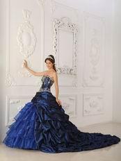Chapel Train Skirt Dark Blue Quinceanera Dress Winter Wear