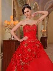 Stylish Side Handmade Flowers Trimed Quinceanera Dress
