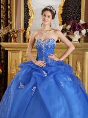 Blue Organza Appliqued Winter Quinceanera Dress Sweetheart