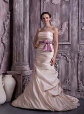 Prom Dresses UK Champagne Prom Celebrity Gowns With Lilac Belt Inexpensive