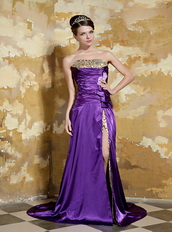 Purple Strapless Leopard Printed Fabric Inside Beaded Party Dresses Inexpensive