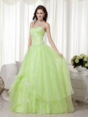 Beautiful New Bubs Color Organza Girls Quinceanera Dress