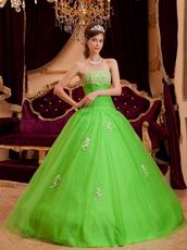 Spring Green Tulle Floor Length Quinceanera Dress By Designer