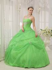 Pretty Quinceanera Gown Made By Spring Green Organza