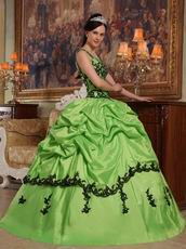 Appliqued Spring Green Quinceanera Dress Like A Princess