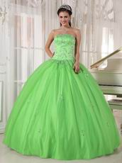 Cheap Spring Green Young Women Quinceanera Gown Dress