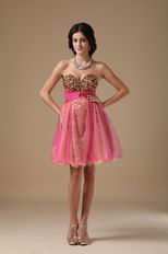 Leopard Printed Hot Pink Sweet 16 Dress By Designer