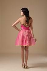Leopard Printed Hot Pink Sweet 16 Dress By Designer