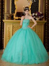 Princess Turquoise Organza Quinceanera Dress With Embroidery