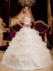 Appliqued Puffy Ball Dress Ivory Quinceanera Gown With Embroidery