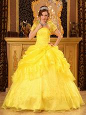 Bright Yellow Embroidery Quinceanera Dress With Jacket