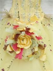 Lolita Cute Daffodil Quinceanera Ball Gown Runway Pageant