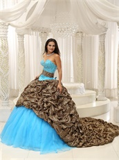 V-Shaped Leopard Bubble Train Aqua Quinceanera Court Dress Exquisite Style
