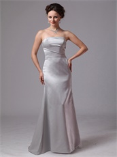Sliver Junoesque Mother Dress For Wedding Ceremony Customize Side Zipper