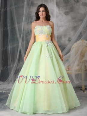 Lovely Organza Appliqued Light Kelly Prom Dress With Belt Inexpensive