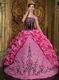 Strapless Hot Pink Quinceanera Dress With Black Embroidery