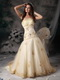 Champagne Strapless Organza Prom Dress With Golden Embroidery Inexpensive