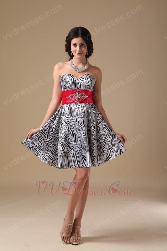 Zebra Sweet 16 Dresses